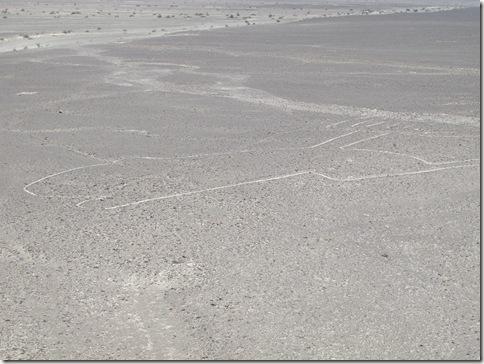 Nazca 002