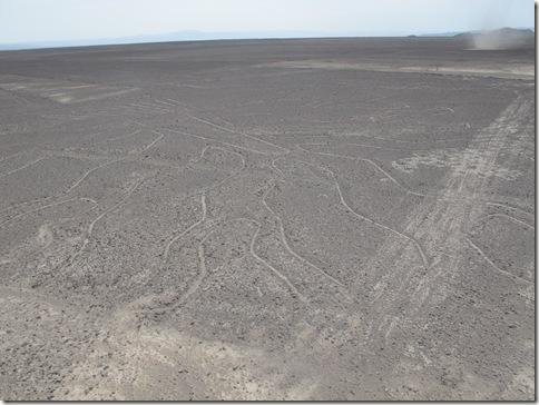Nazca 003